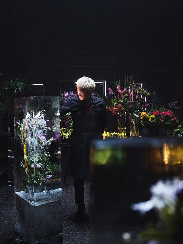 KLAUS STIEGEMEYER: Claudia Scholtan for Miele