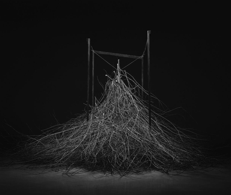 IGOR PANITZ: The Lost Roots