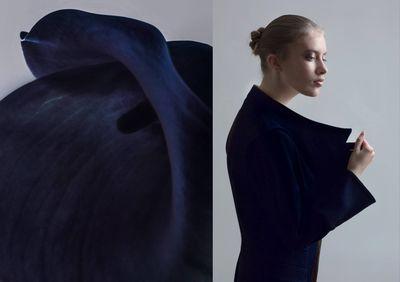 'Black Swan' by DAMIEN KRISL