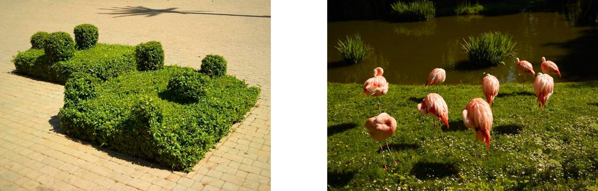 MAKING PICTURES: : 'Go Away', a publication by Dan BURN-FORTI