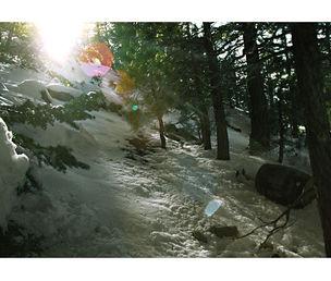 STEPHEN WIRTZ GALLERY : Melanie Pullen, Zanotti's Sunflare (Barrel Series), 2003