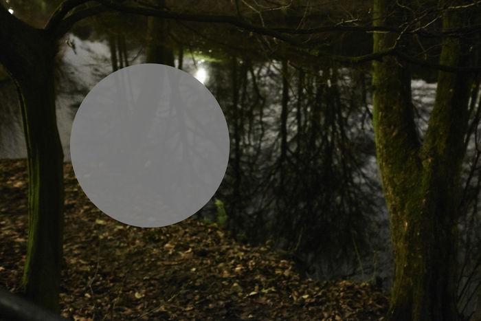 VISUAL ARTIST PHOTOGRAPHER ANJA ZANDER / KYD NO.13
