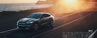 "SEVERIN WENDELER: ""Mustang Mach-E"" - Photography by Patrick Curtet c/o Severin Wendeler"