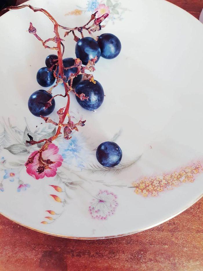 ROYAN - Summer Grapes