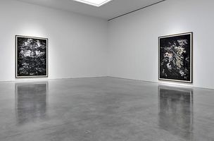 GAGOSIAN GALLERY : Andreas Gursky