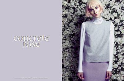 Concrete Rose / PUSH IT Magazine