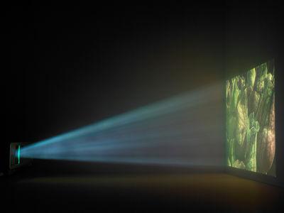 Photosynthesis Artificialis