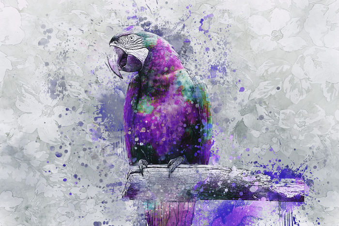 Parrot Purple  Mixed Media Art