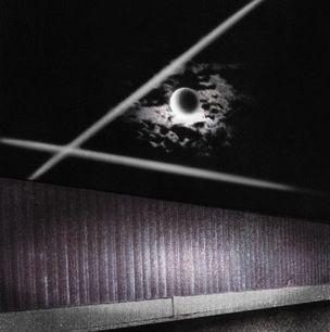 AN VOGELHÄUSERN MANGELT ES JEDOCH NICHT by Luca Schenardi