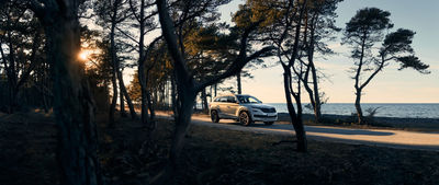 CHIMNEY GROUP : SKODA : Retouch by Joakim Rissveds
