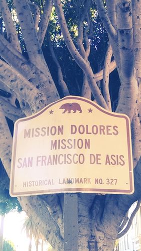 GOSEE on MISSION DOLORES