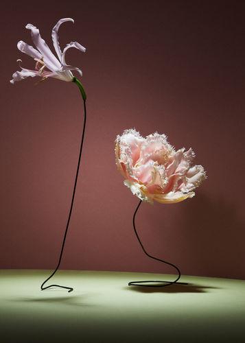'Florosence' by Christoffer Dalkarls (Photos) & Linnea Apelqvist (Props) c/o AGENT MOLLY & CO
