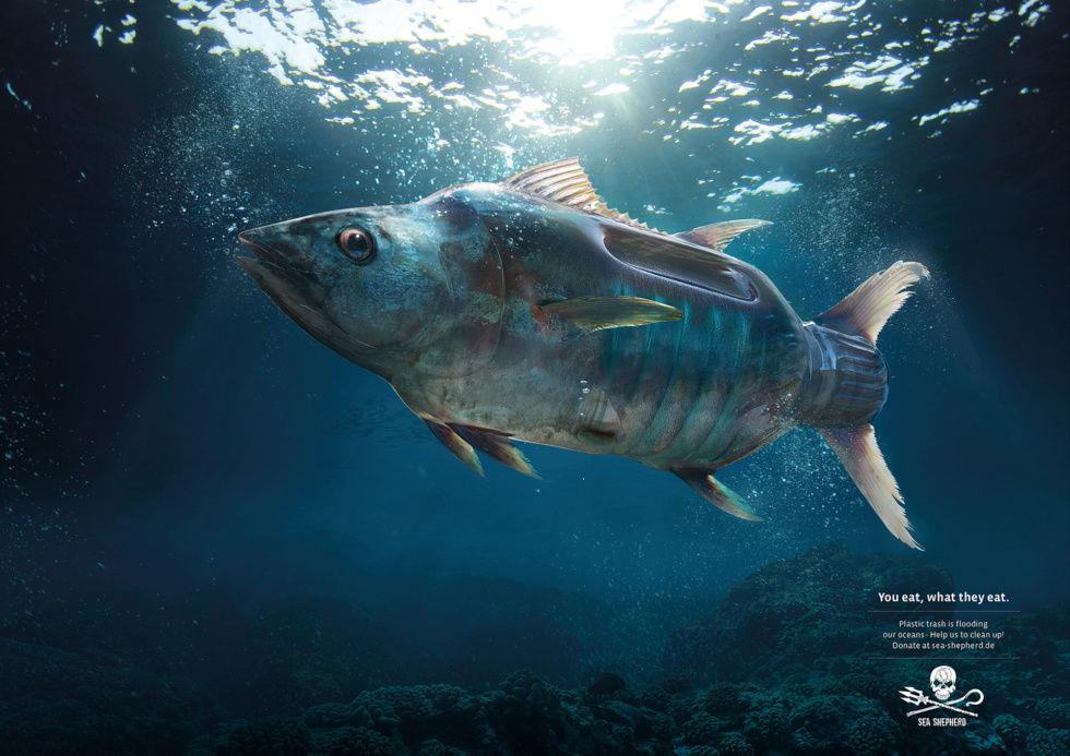 "Platinum c/o ANALOG/DIGITAL for Sea Shepherd ""Plastic Fish"""