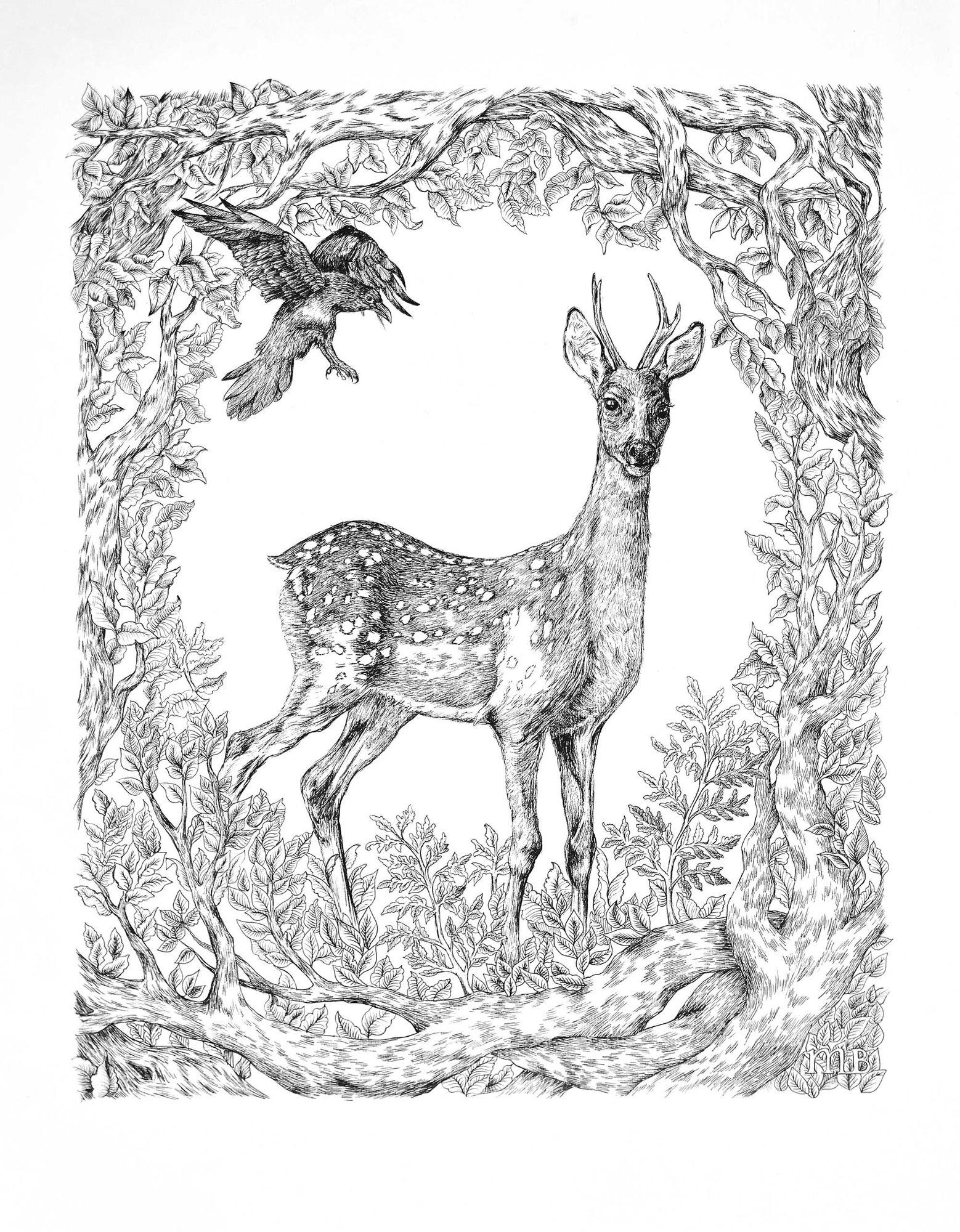 COSMOPOLA | Marie de Beaucourt | Deer & Crow