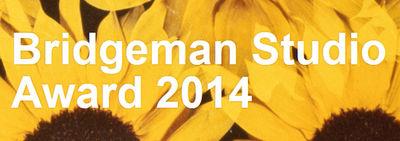BRIDGEMAN STUDIO AWARD 14