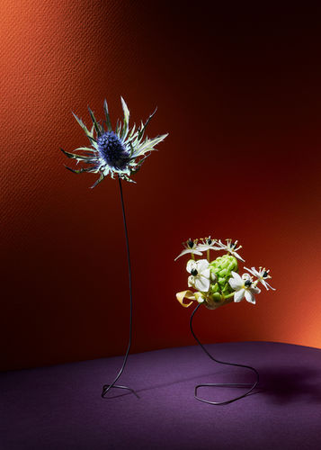 'Florosence' by Christoffer Dalkarls c/o AGENT MOLLY & CO