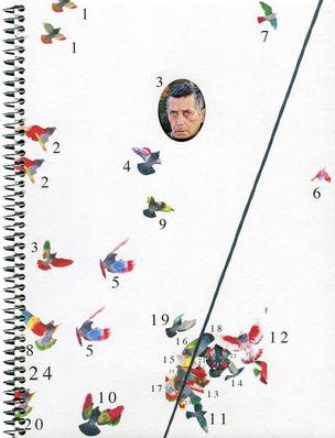 Ricardo Cases - Paloma al Aire