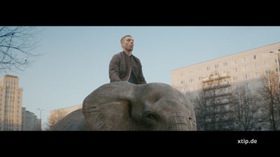 STROBINSKI for XTiP  'Elefant'
