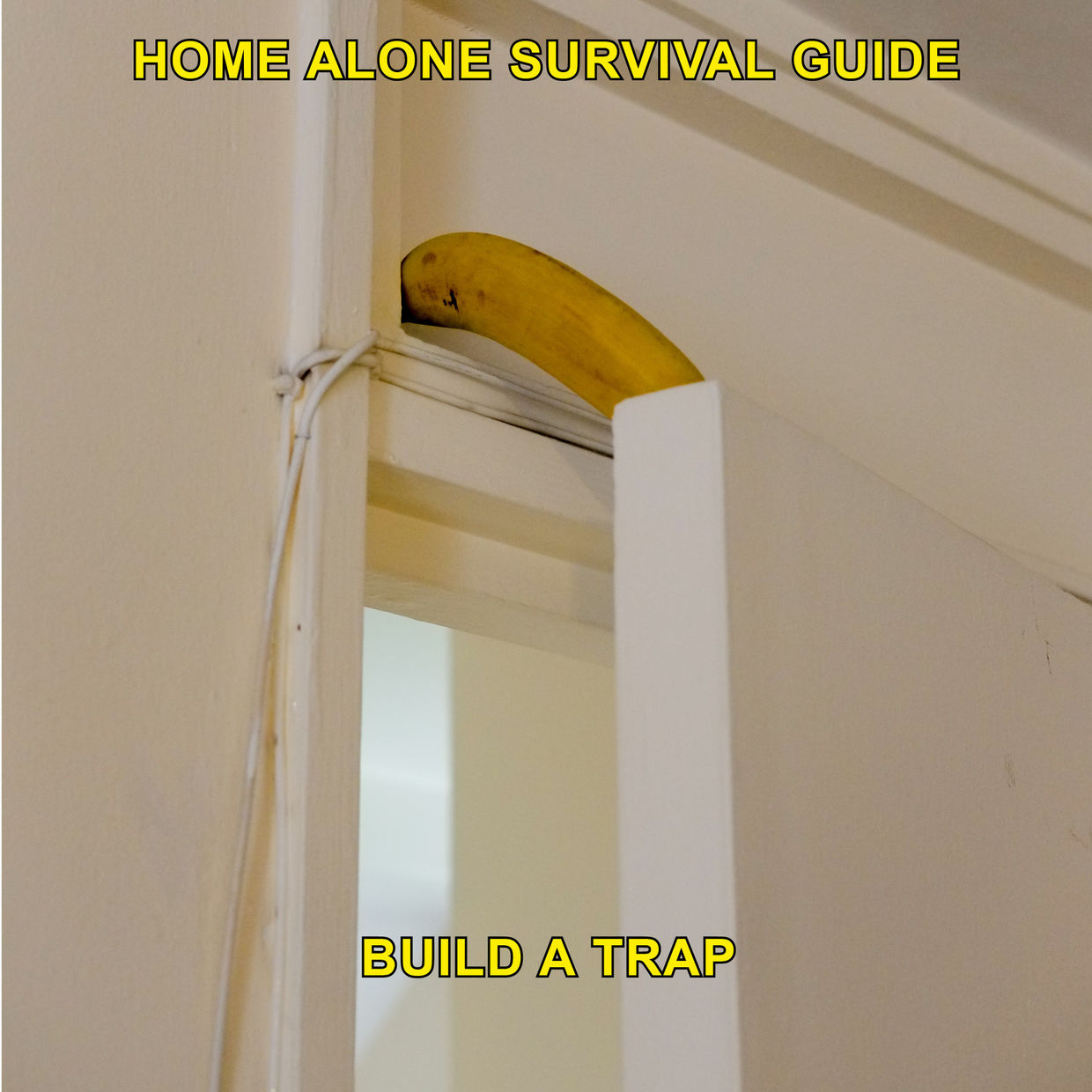 'Home Alone Survival Guide' by Max Siedentopf (HATJE CANTZ)