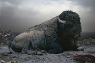 YOSSI MILO GALLERY : Until the Kingdom Comes by Simen Johan