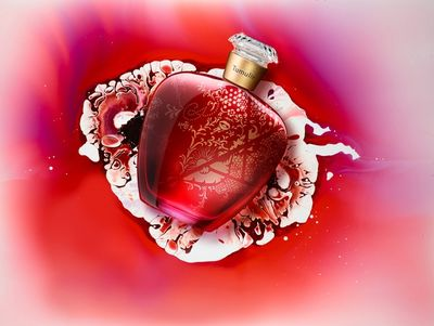 TOM SEELBACH - Fragrances in Mood