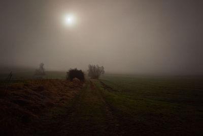 SOLAR UND FOTOGRAFEN