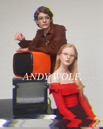 Ruben Riermeier, Kampagne Andy Wolf