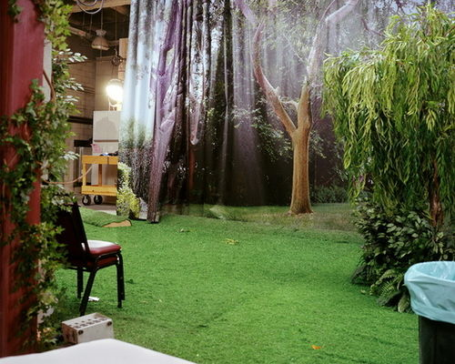 STEPHEN WIRTZ GALLERY : Larry Sultan, Backyard Film Set, 2002