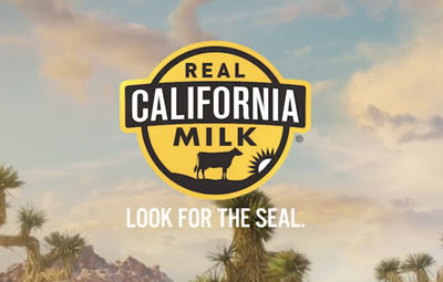 STILLSTARS - Natasha van Velzen foodstyling for Real California Milk