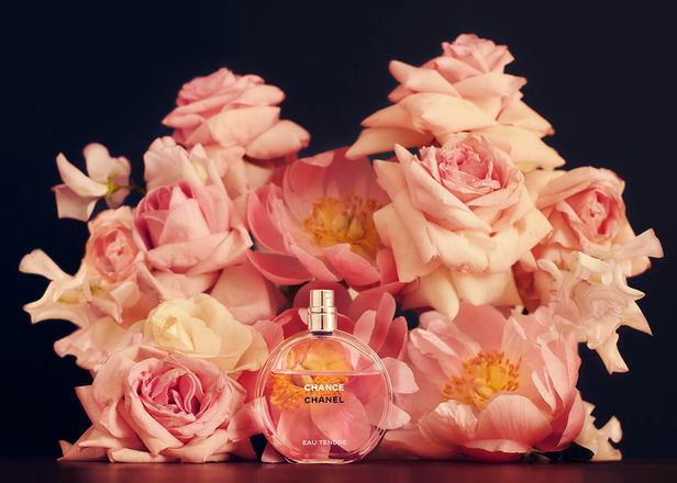 New Artist : Valentina TEINITZER c/o BIGOUDI, Floral Stylist & Botanical Set Designer