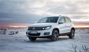 AGENT MOLLY & CO : Erik HAGMAN for VW SKITEAM