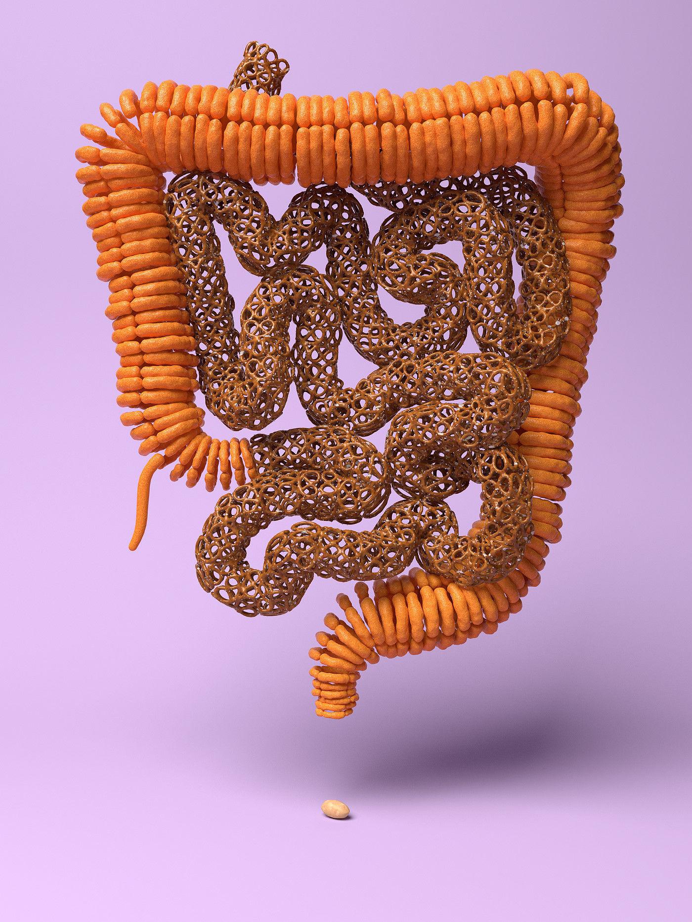 Organic Food - Salintestines