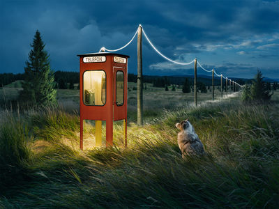 'If lost, please call' by ERIK JOHANSSON c/o AGENT MOLLY & CO