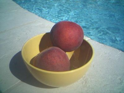 Peaches of Provence