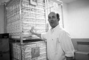 AVENGER PHOTOGRAPHERS : Gene GLOVER for GABOR SHOES / SNIPE
