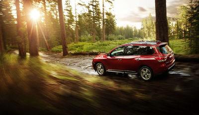 Nissan Pathfinder forest