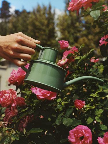 ARKET - An English Garden
