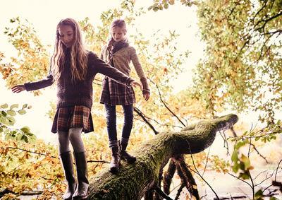 (R)Auszeit im Wald