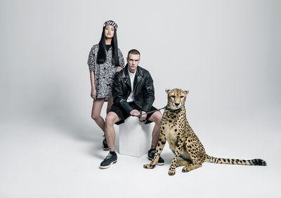 Style Safari
