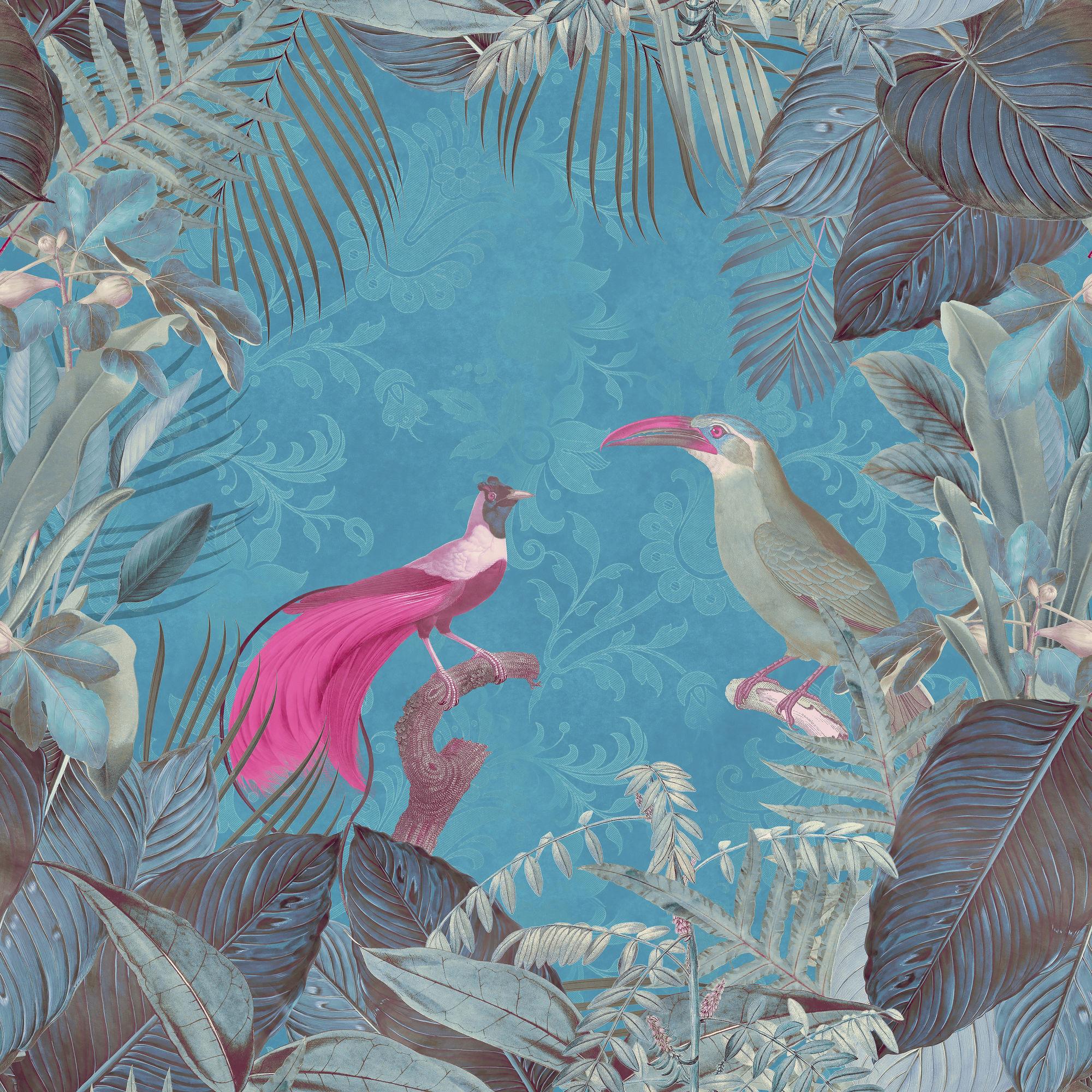 Paradise Birds