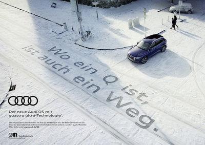 Falca / Audi / Rank