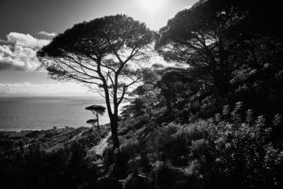 """ROCKENFELLER & GöBELS: """"SPAIN '21"""" PERSONAL WORK BY MICHAEL HAEGELE"""