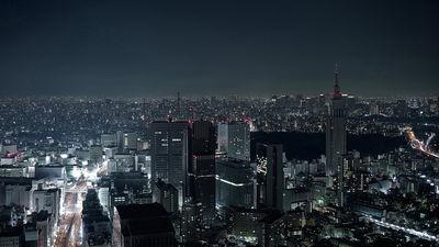 Nippon by ROBERT WUNSCH