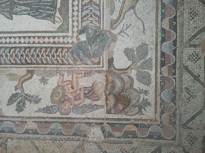 GOSEE : CYPRUS