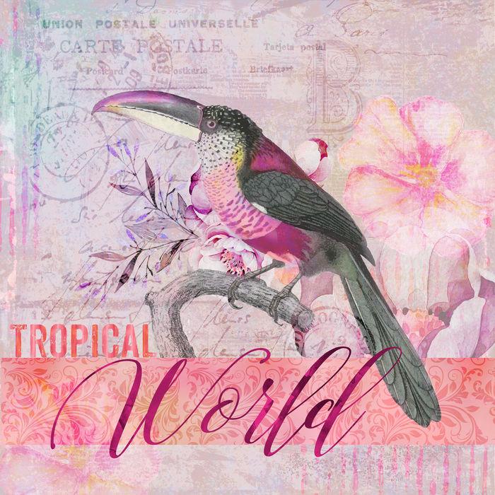 Toucan Exotic Bird Mixed Media Art