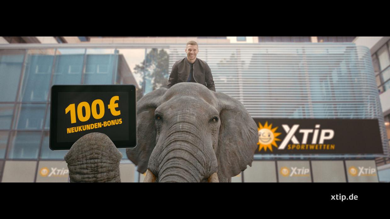 STROBINSKI for XTiP  'Elefant'