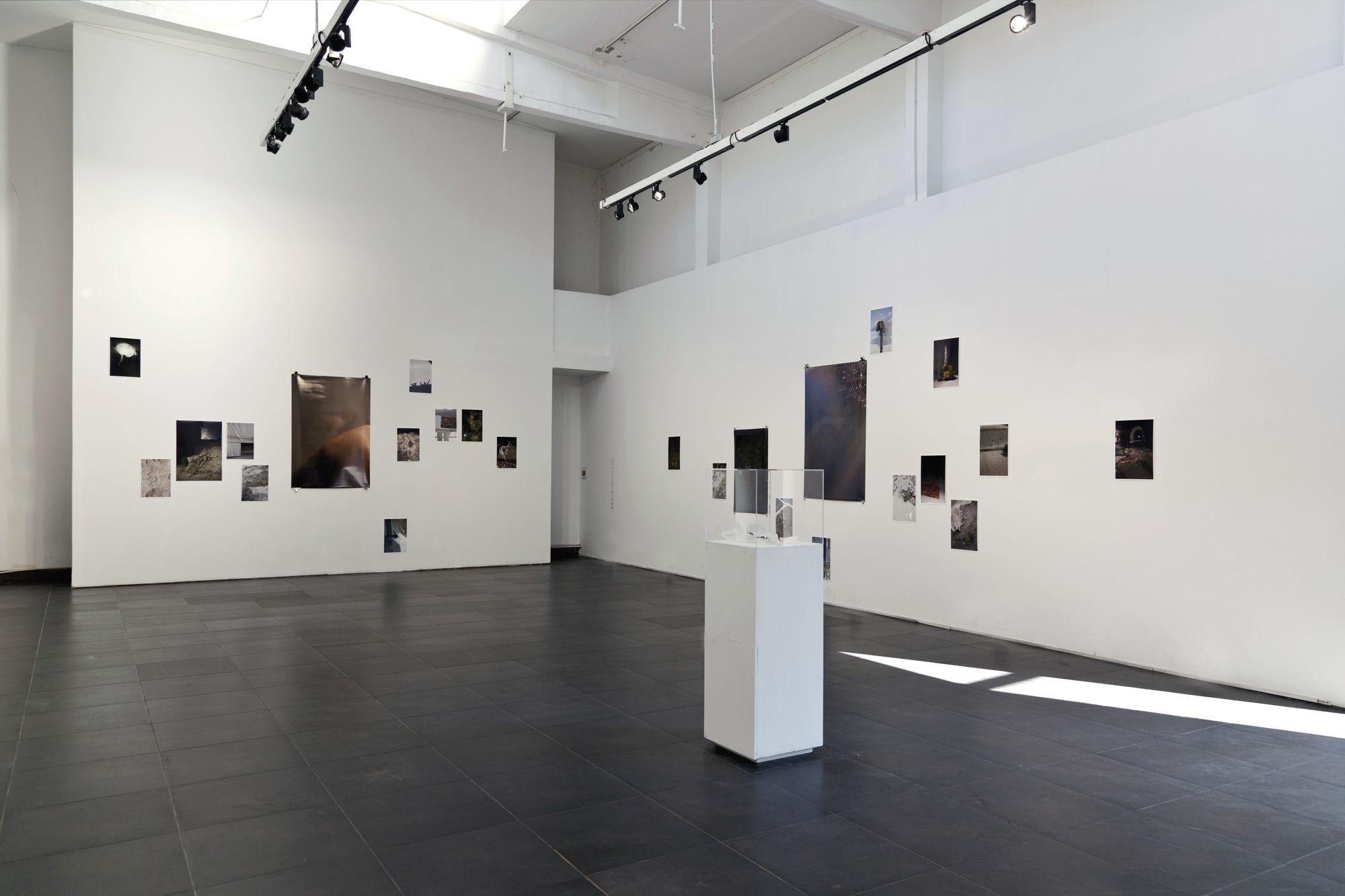 Silja Yvette 'SEASON OF ADMIN' - installation view