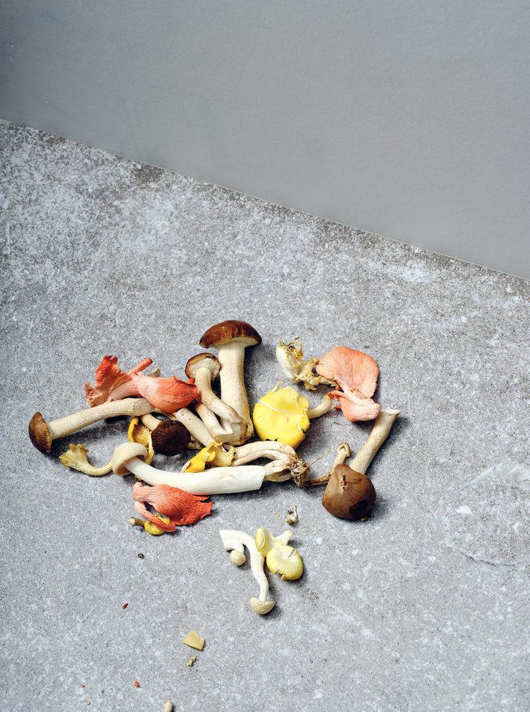 'Mushrooms' by Christian Kerber c/o SOLAR UND FOTOGRAFEN