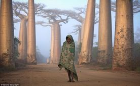 Traveler Photo Contest 2012 - National Geographic