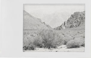 Minor White, Boundary Mountain, Benton, California, 1959 (WestLicht, Wien)